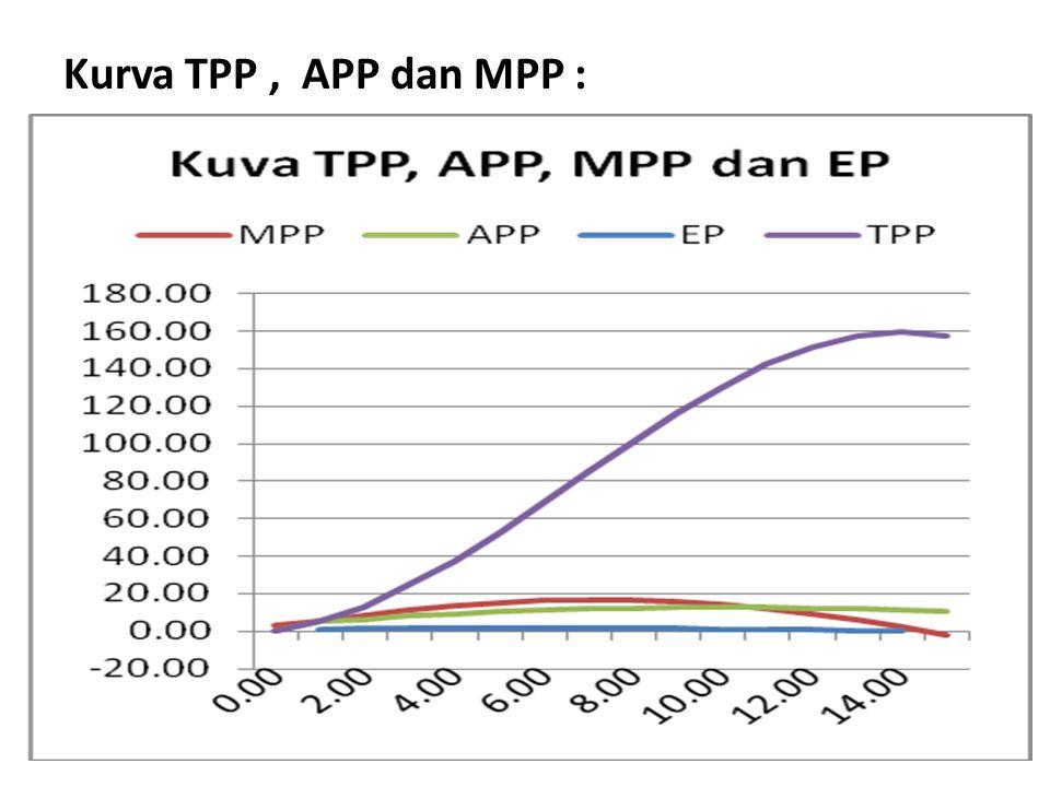Kurva TPP , APP dan MPP :