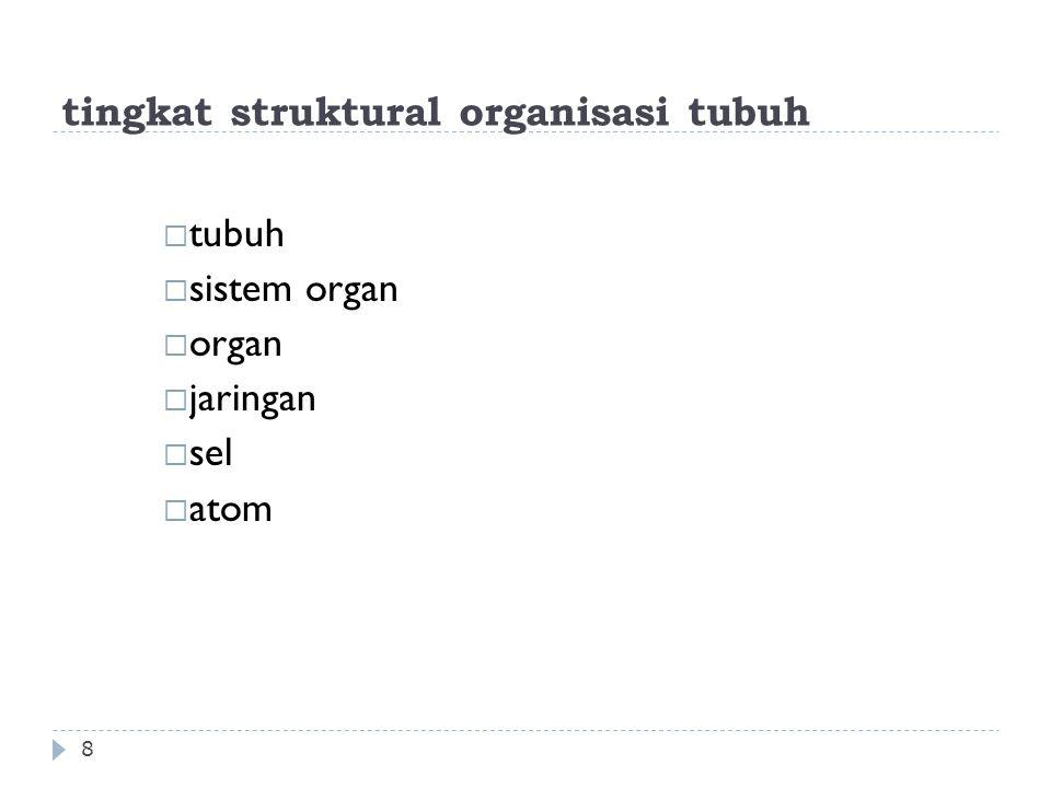tingkat struktural organisasi tubuh