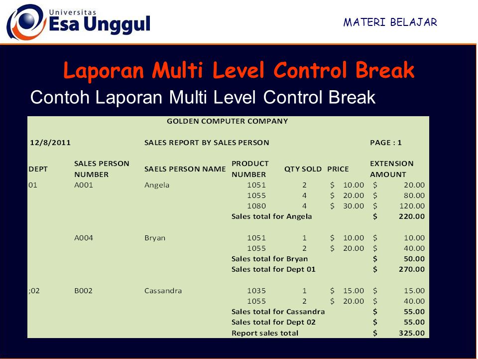 Laporan Multi Level Control Break