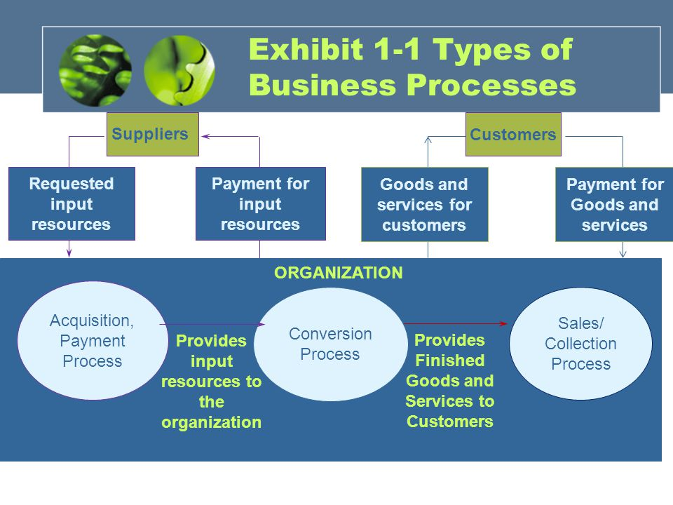 Exhibit 1-1 Types of Business Processes