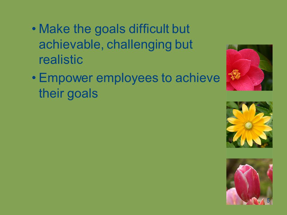 Make the goals difficult but achievable, challenging but realistic