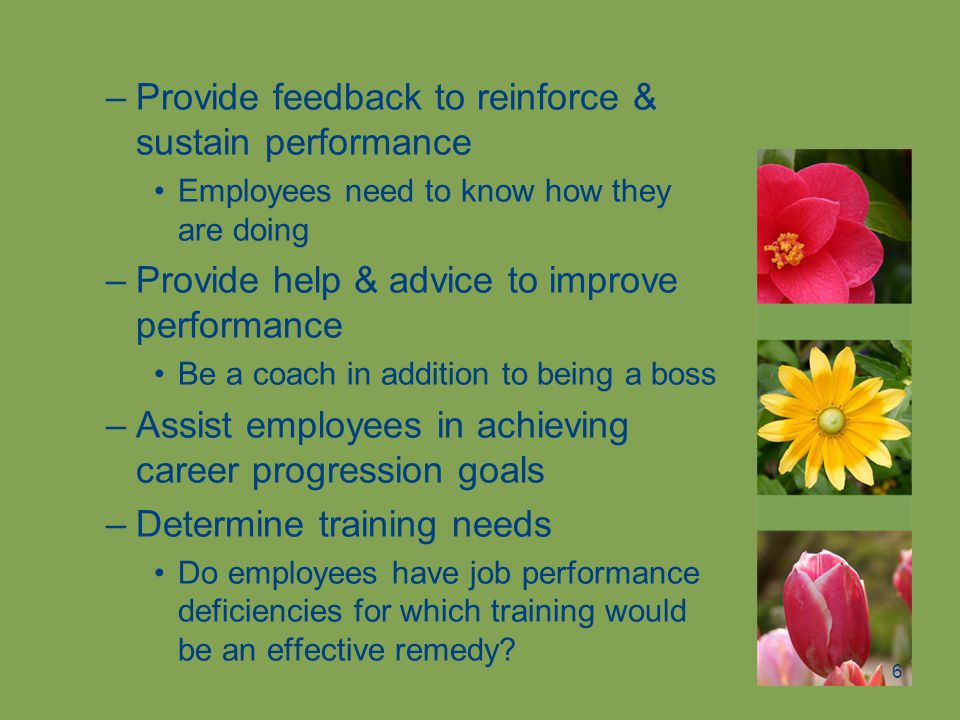 Provide feedback to reinforce & sustain performance