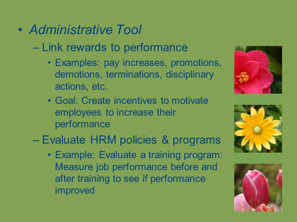 Administrative Tool Link rewards to performance