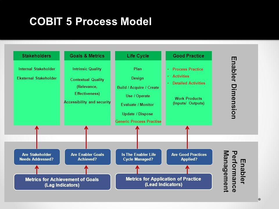 COBIT 5 Process Model Enabler Dimension Management Performance Enabler
