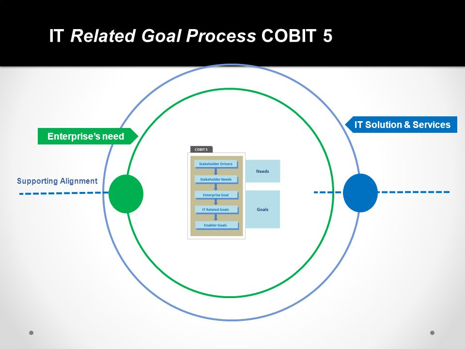 IT Related Goal Process COBIT 5