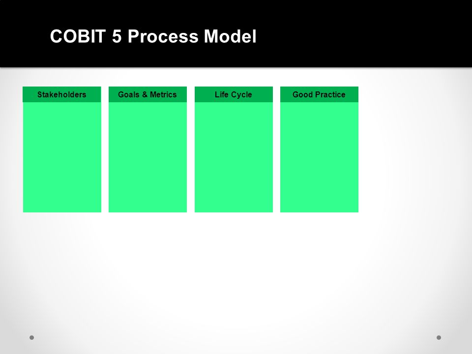 COBIT 5 Process Model Stakeholders Goals & Metrics Life Cycle