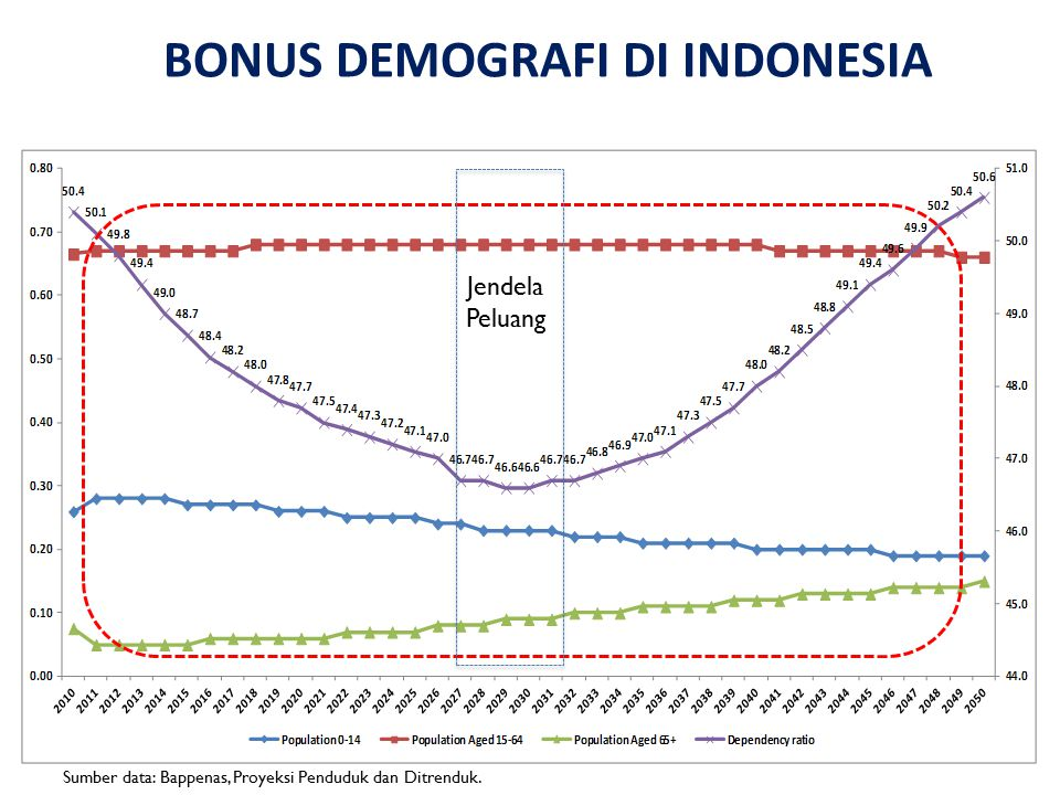 BONUS DEMOGRAFI DI INDONESIA