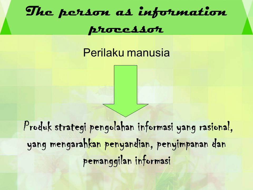 The person as information processor