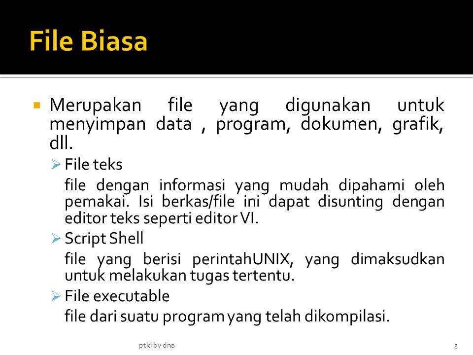 File Biasa Merupakan file yang digunakan untuk menyimpan data , program, dokumen, grafik, dll. File teks.