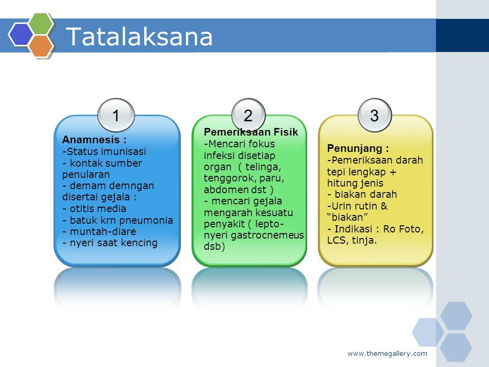 Tatalaksana 1 2 3 Pemeriksaan Fisik Anamnesis : Penunjang :
