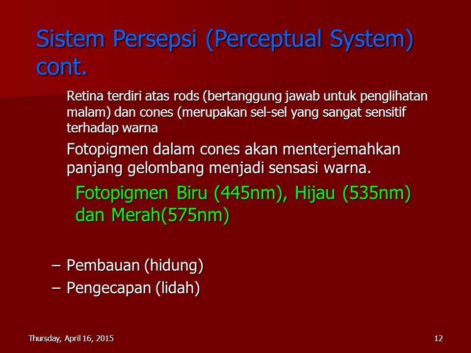 Sistem Persepsi (Perceptual System) cont.