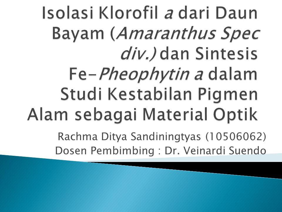 Isolasi Klorofil a dari Daun Bayam (Amaranthus Spec div