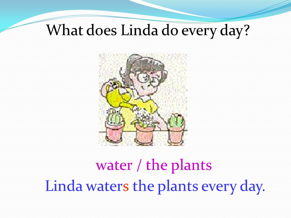 What does Linda do every day