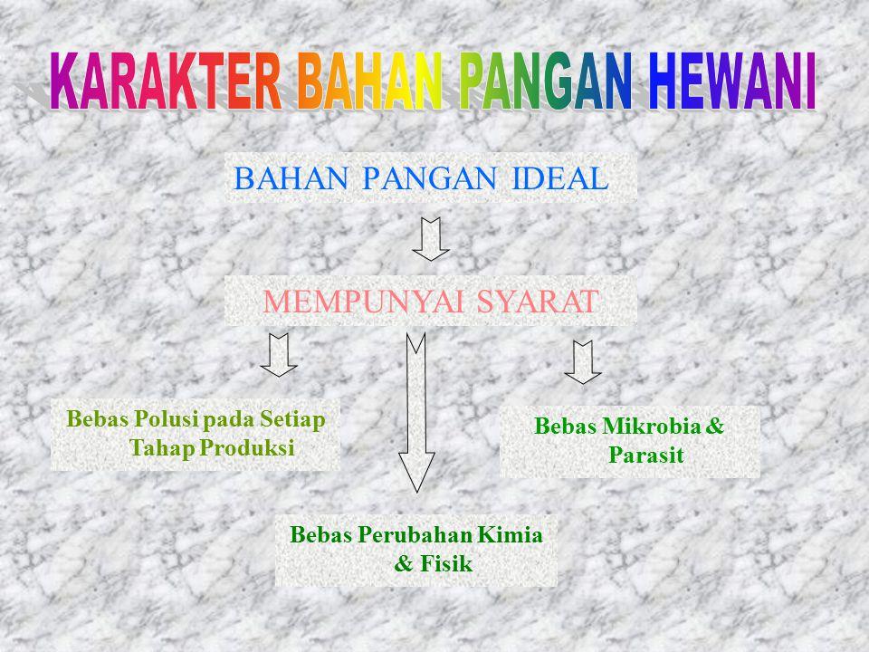 KARAKTER BAHAN PANGAN HEWANI