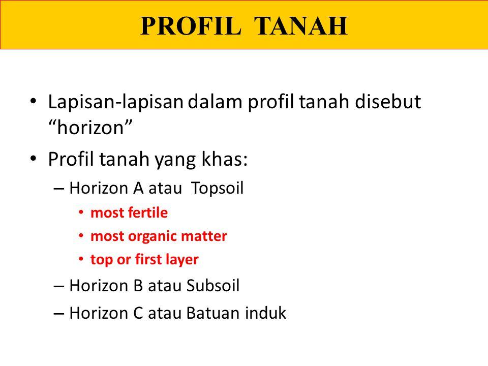 PROFIL TANAH Lapisan-lapisan dalam profil tanah disebut horizon