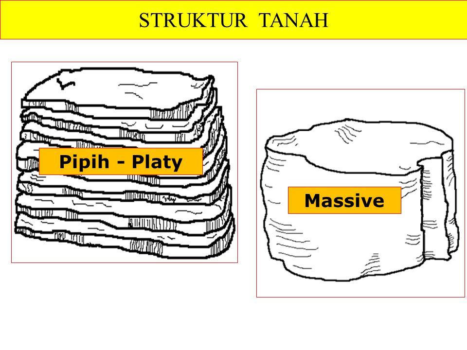STRUKTUR TANAH Pipih - Platy Massive