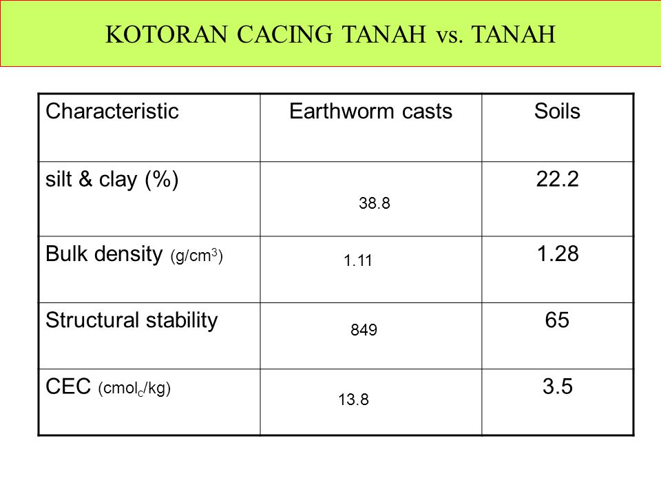 KOTORAN CACING TANAH vs. TANAH