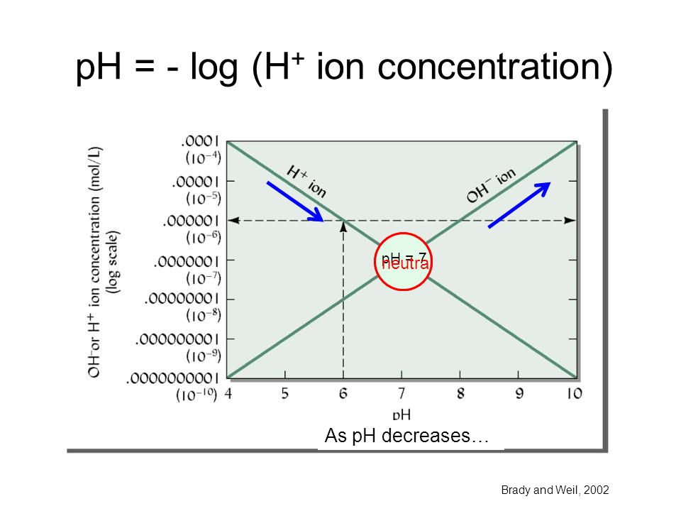 pH = - log (H+ ion concentration)