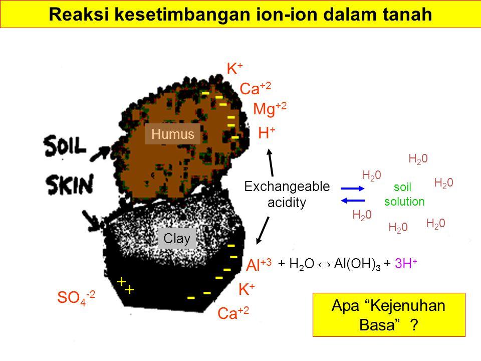Reaksi kesetimbangan ion-ion dalam tanah