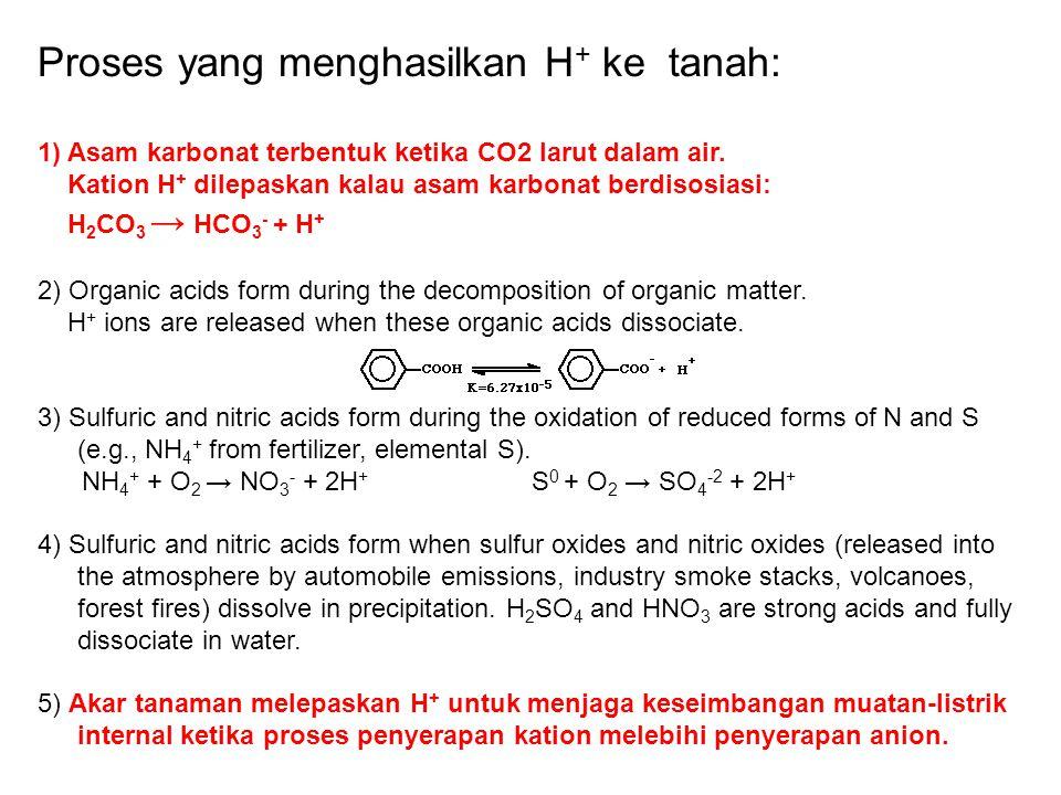 Proses yang menghasilkan H+ ke tanah:
