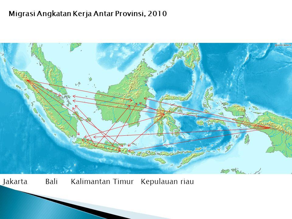 Migrasi Angkatan Kerja Antar Provinsi, 201010