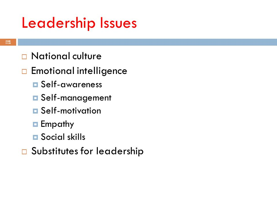 Leadership Issues National culture Emotional intelligence