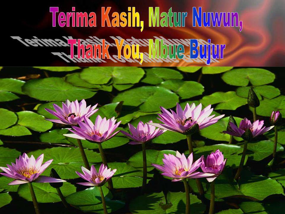 Terima Kasih, Matur Nuwun,