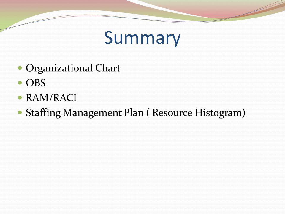 Summary Organizational Chart OBS RAM/RACI