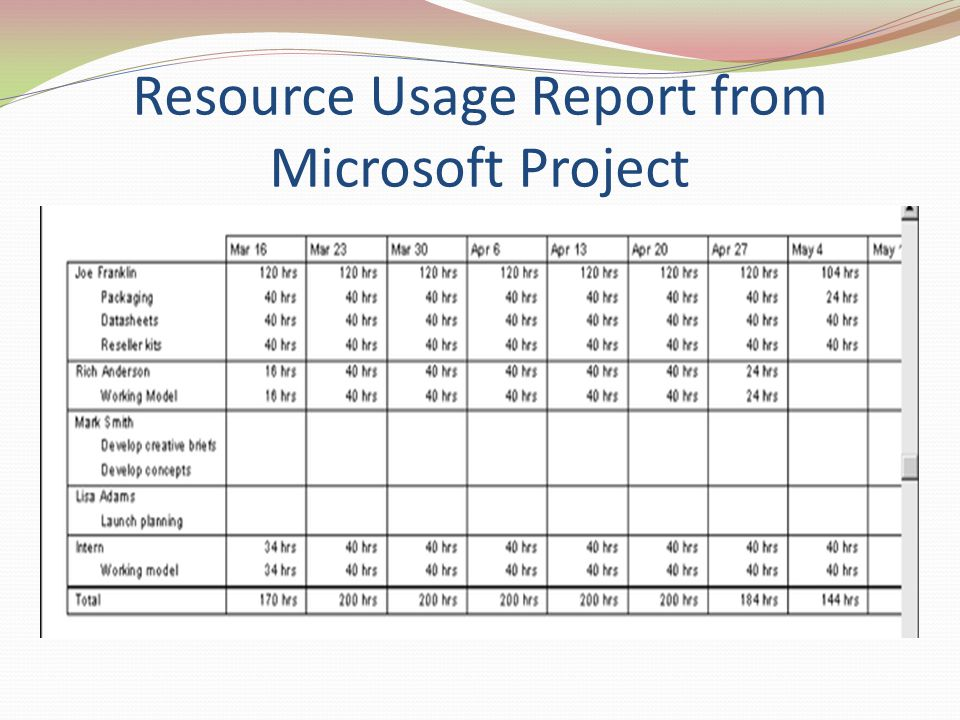 Resource Usage Report from Microsoft Project