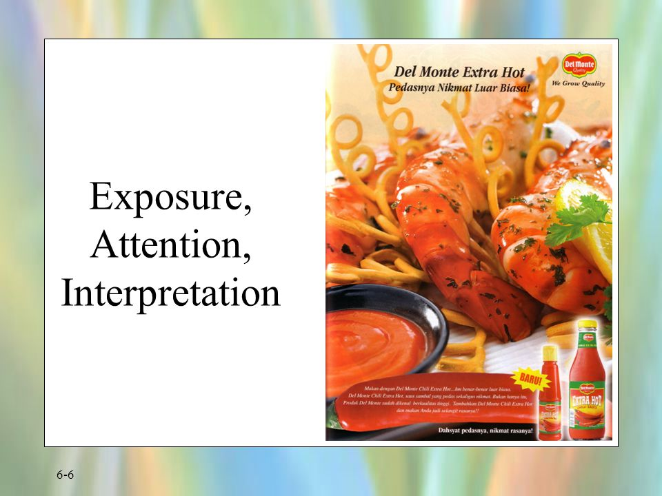Exposure, Attention, Interpretation