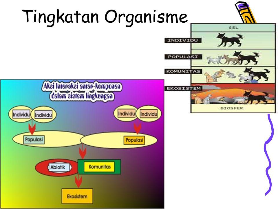 Tingkatan Organisme