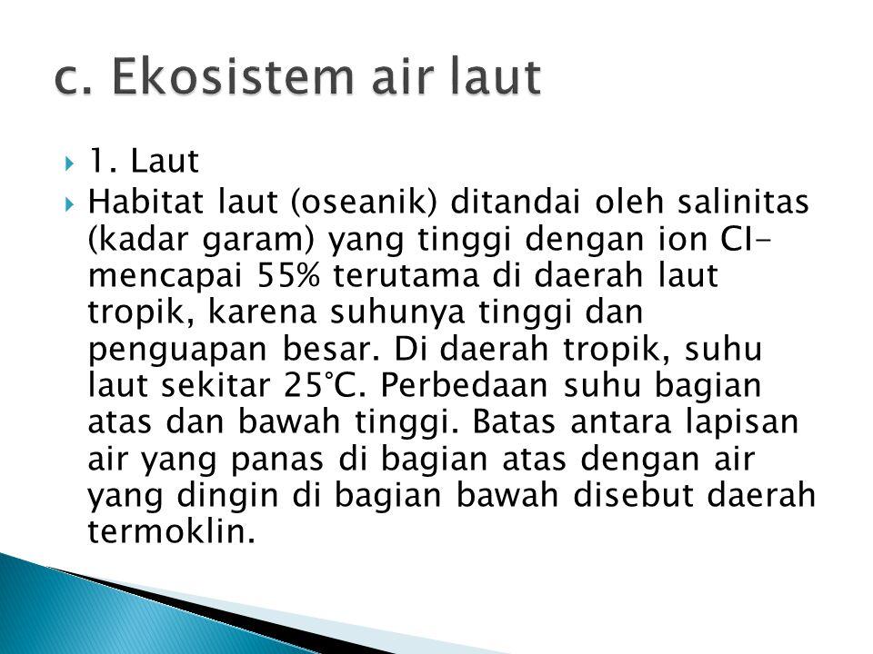 c. Ekosistem air laut 1. Laut