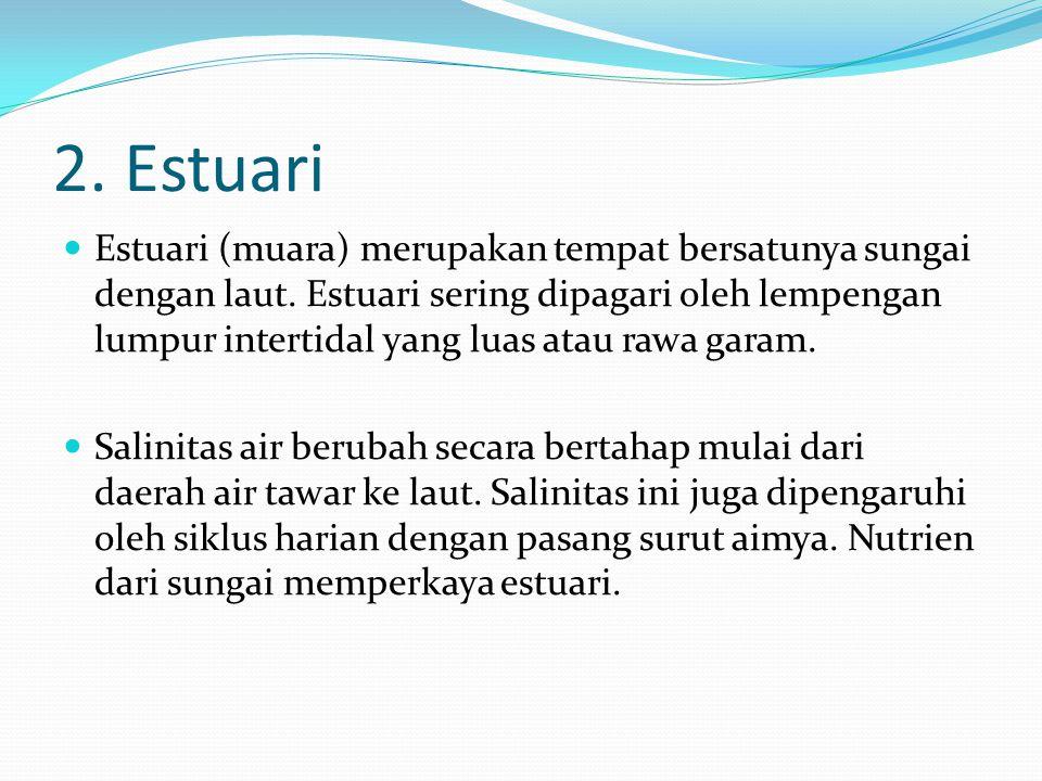 2. Estuari