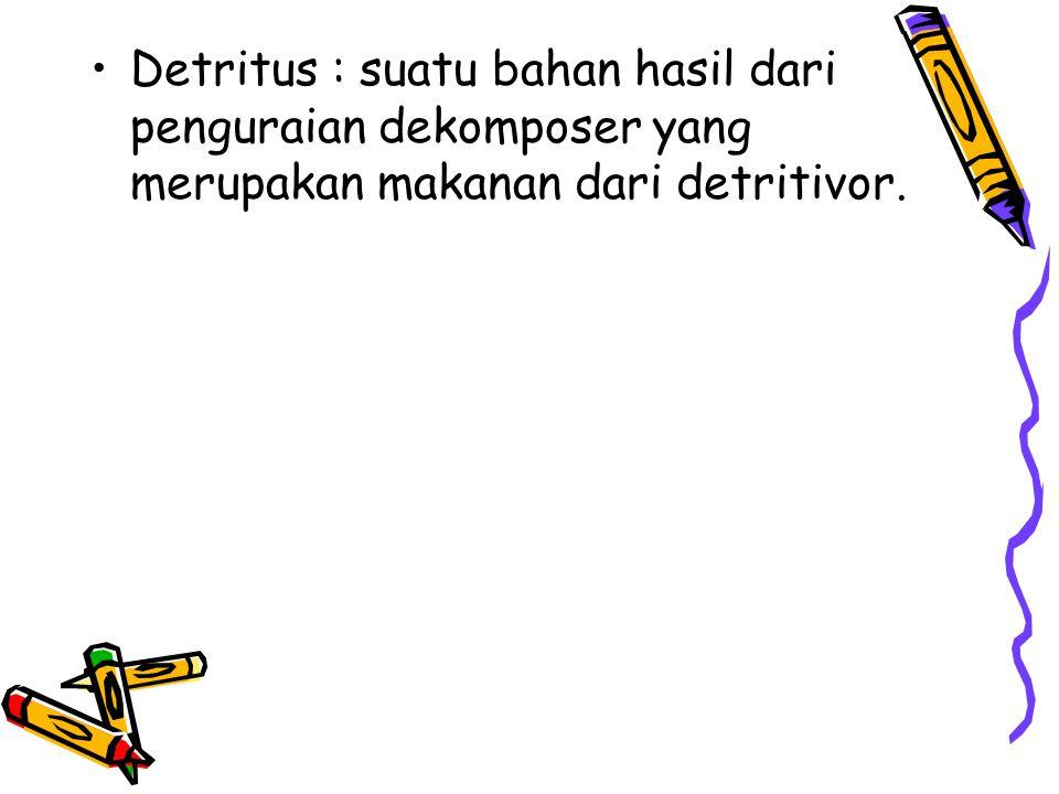 Detritus : suatu bahan hasil dari penguraian dekomposer yang merupakan makanan dari detritivor.