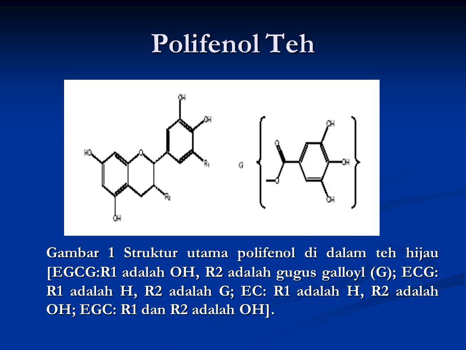 Polifenol Teh