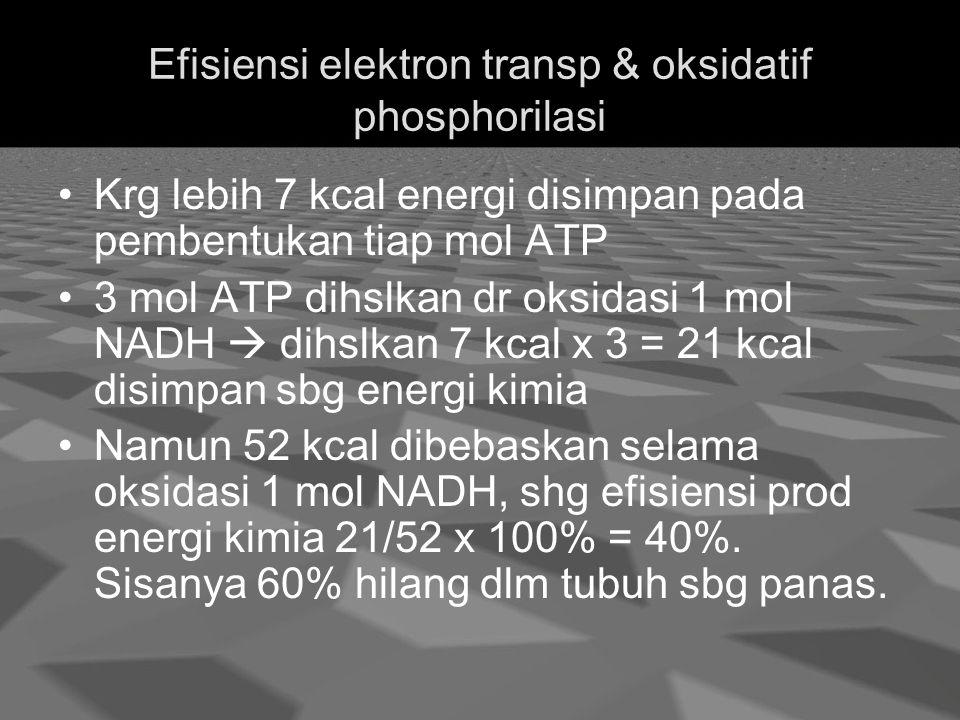 Efisiensi elektron transp & oksidatif phosphorilasi