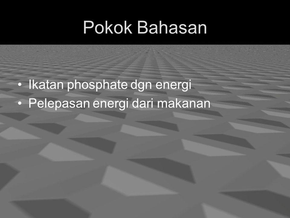 Pokok Bahasan Ikatan phosphate dgn energi