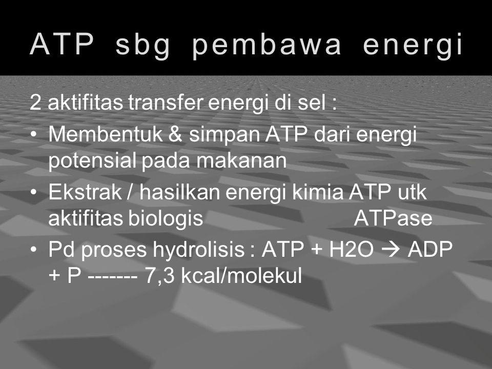 ATP sbg pembawa energi 2 aktifitas transfer energi di sel :