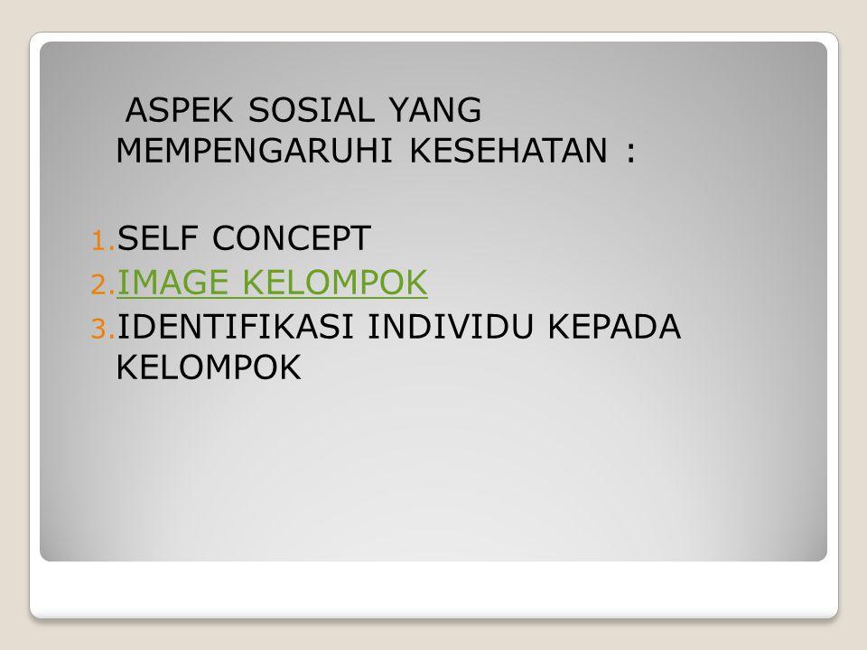 ASPEK SOSIAL YANG MEMPENGARUHI KESEHATAN :