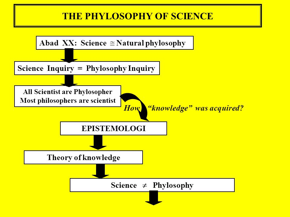 THE PHYLOSOPHY OF SCIENCE