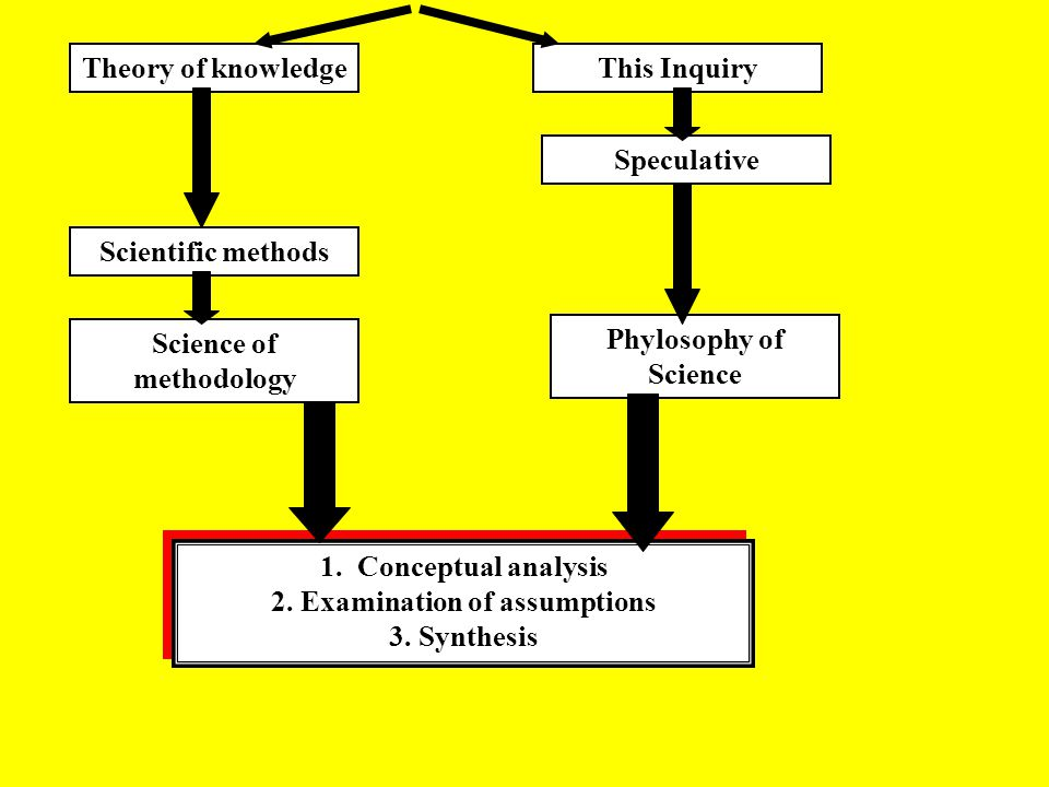 Science of methodology 2. Examination of assumptions