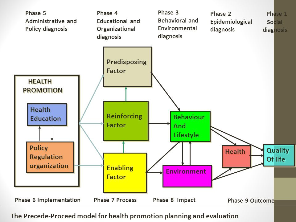 precede proceed model to educate family with school children In overweight/obese children using a precede-proceed framework and precede-proceed model: application to asthma in children with comorbid.
