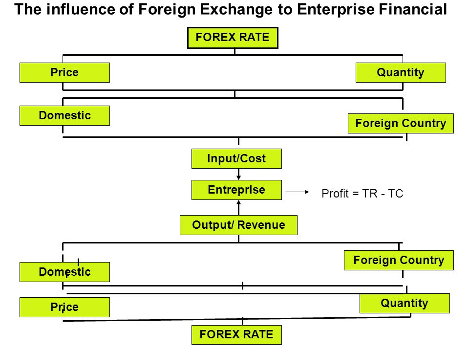 The influence of Foreign Exchange to Enterprise Financial