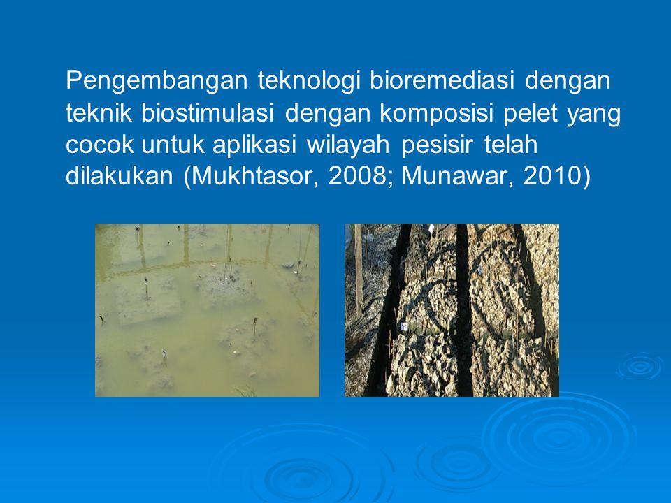 Pengembangan teknologi bioremediasi dengan teknik biostimulasi dengan komposisi pelet yang cocok untuk aplikasi wilayah pesisir telah dilakukan (Mukhtasor, 2008; Munawar, 2010)