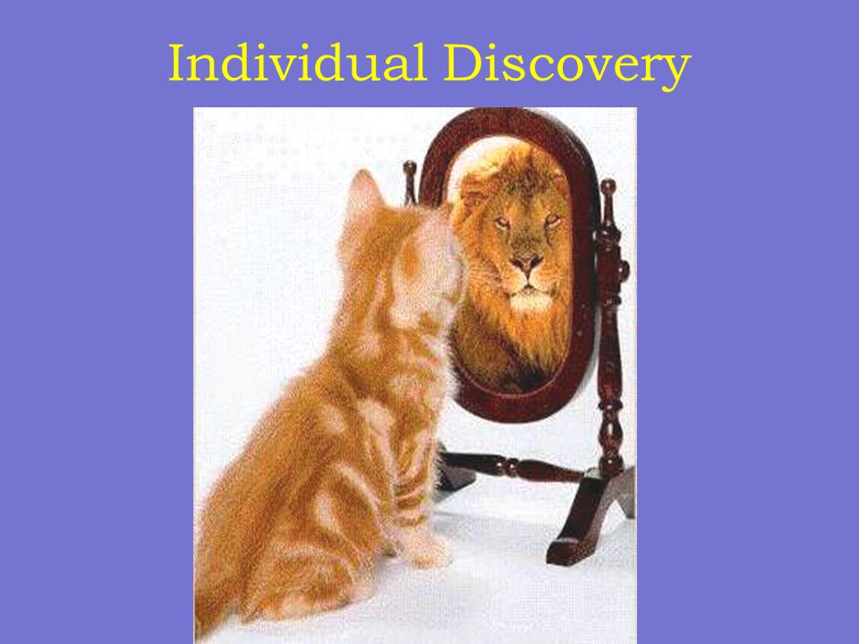 Individual Discovery