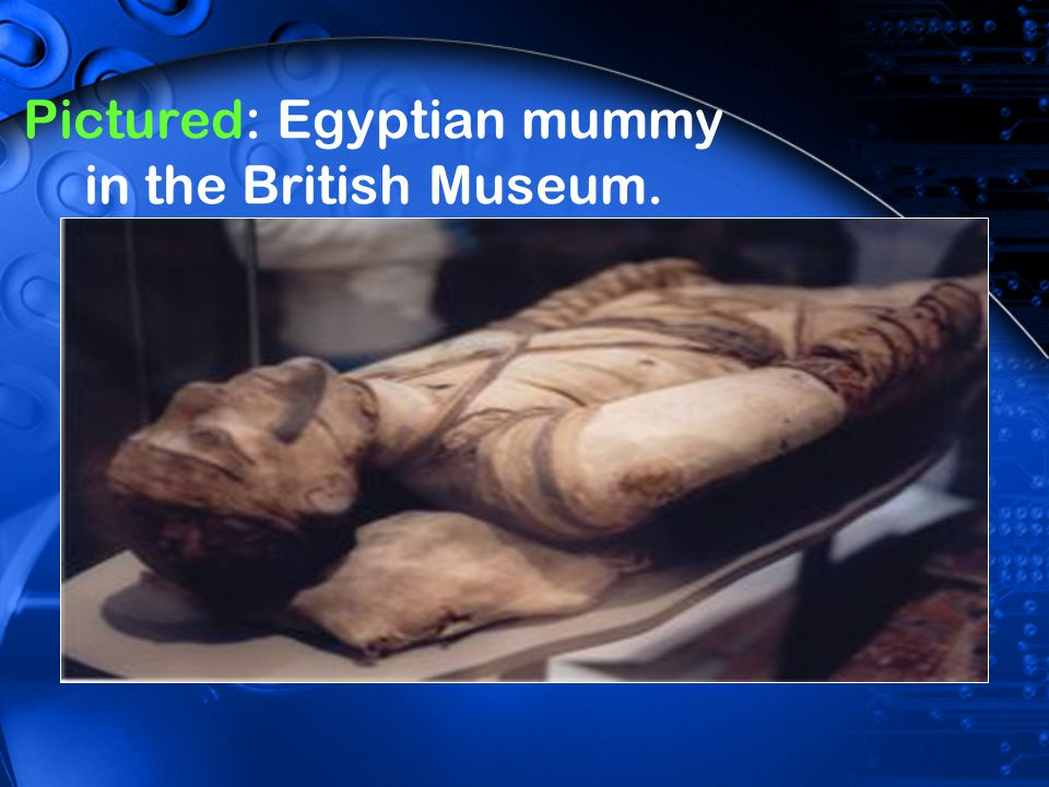Pictured: Egyptian mummy in the British Museum.