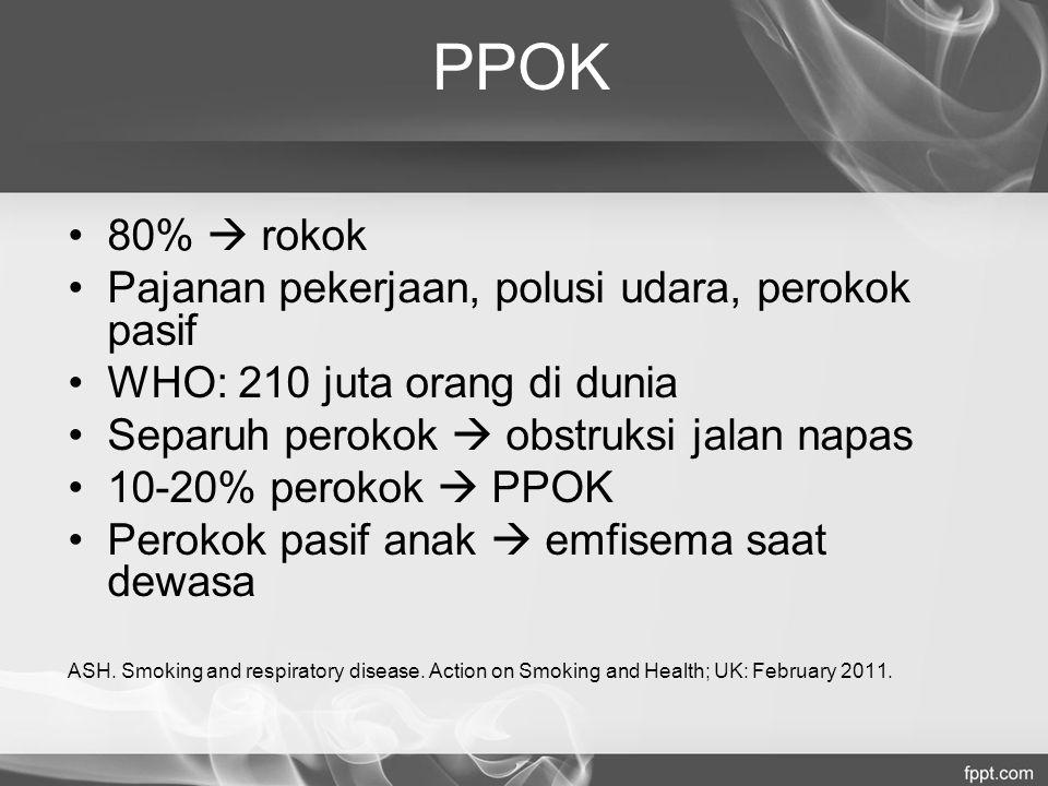 PPOK 80%  rokok Pajanan pekerjaan, polusi udara, perokok pasif