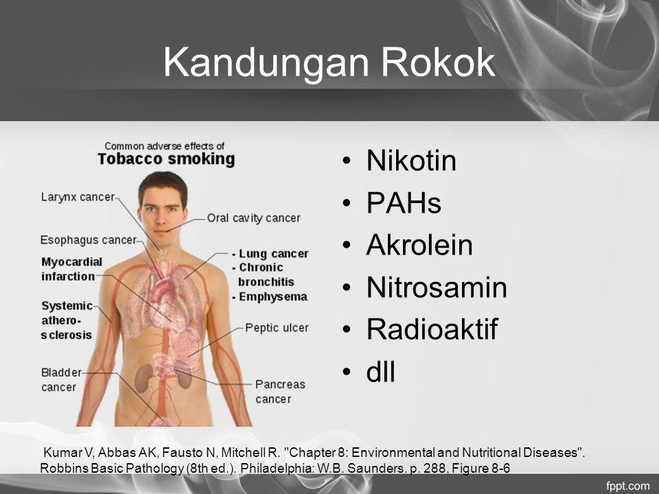 Kandungan Rokok Nikotin PAHs Akrolein Nitrosamin Radioaktif dll