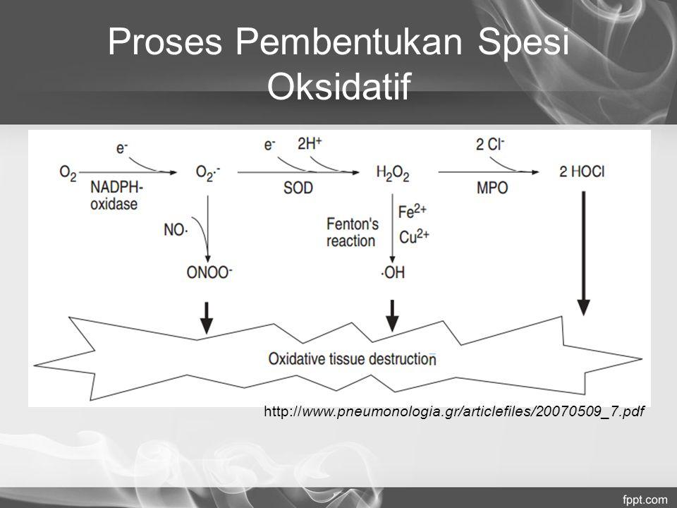 Proses Pembentukan Spesi Oksidatif