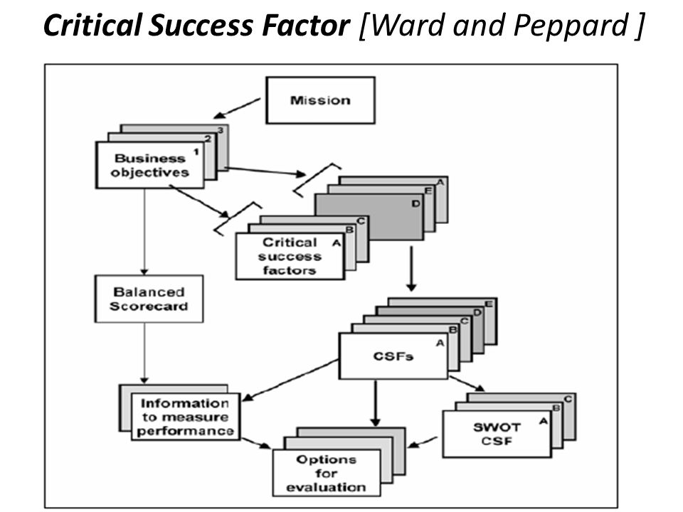 Critical Success Factor [Ward and Peppard ]